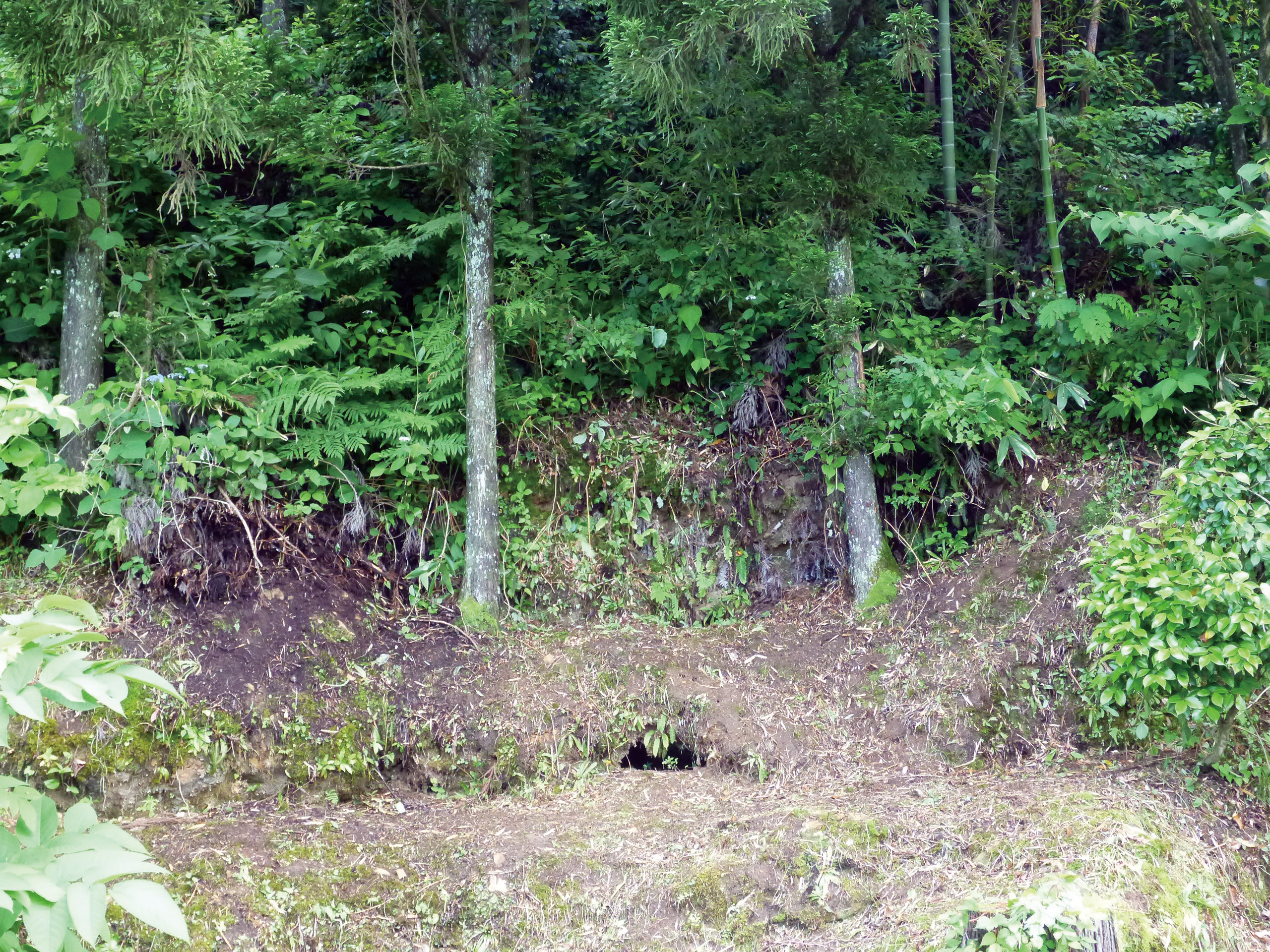 小窪1_布目瓦の焼き窯跡